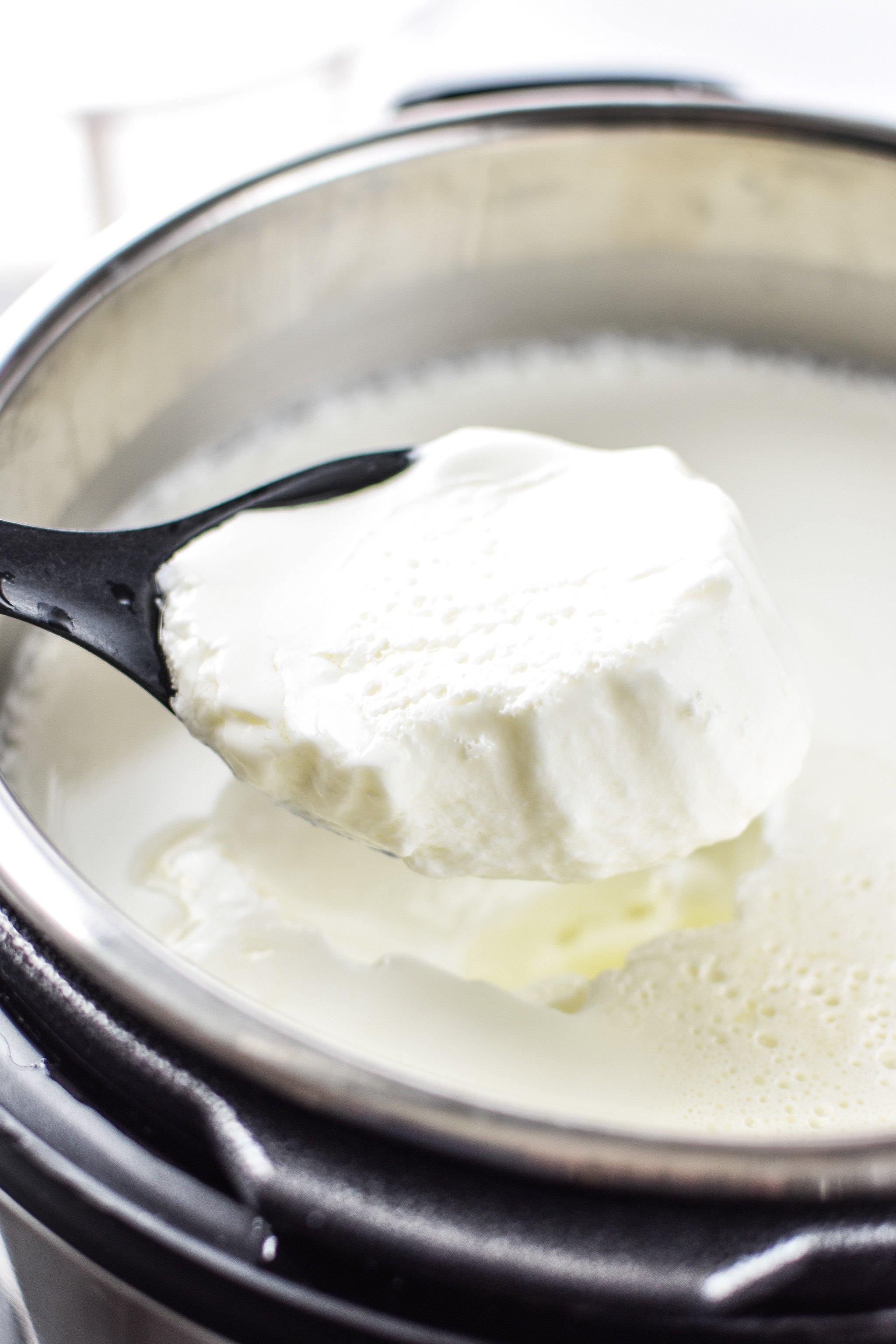 A spoonful of freshly made Instant Pot yogurt